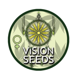 vision-seeds
